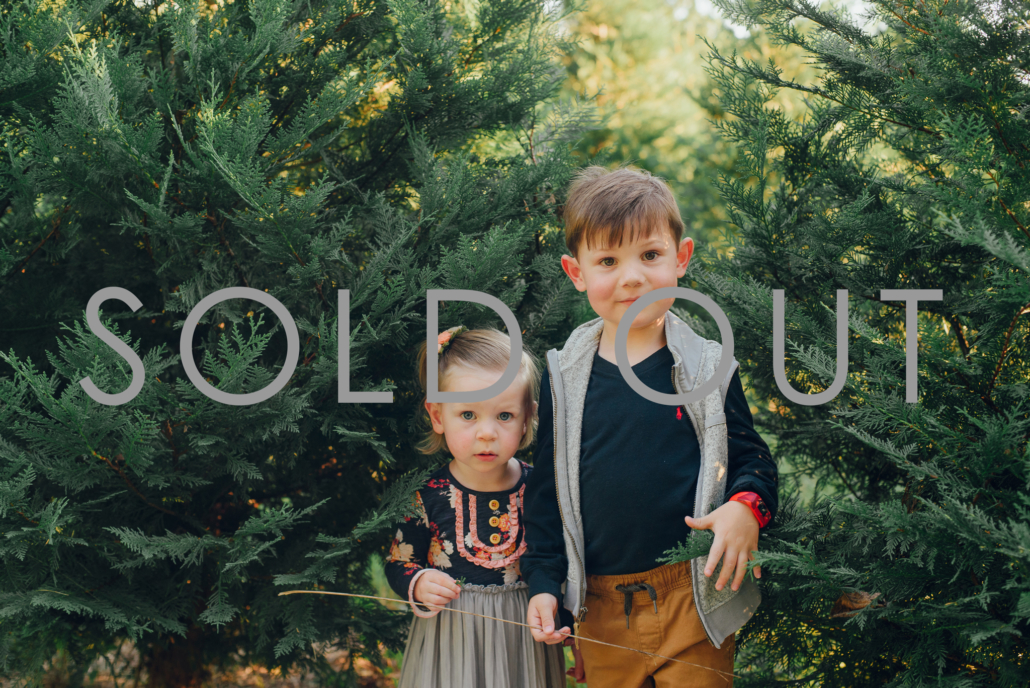 santa-sugar hill-buford-suwanee-lawrenceville-dacula-braselton-duluth-georgia-atlanta-photography-photo-studio-family-child-children-kids-baby-toddler